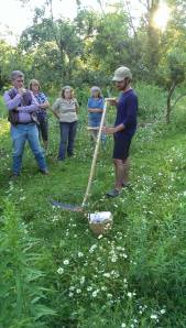 Talked a bit about scything in the orchard.